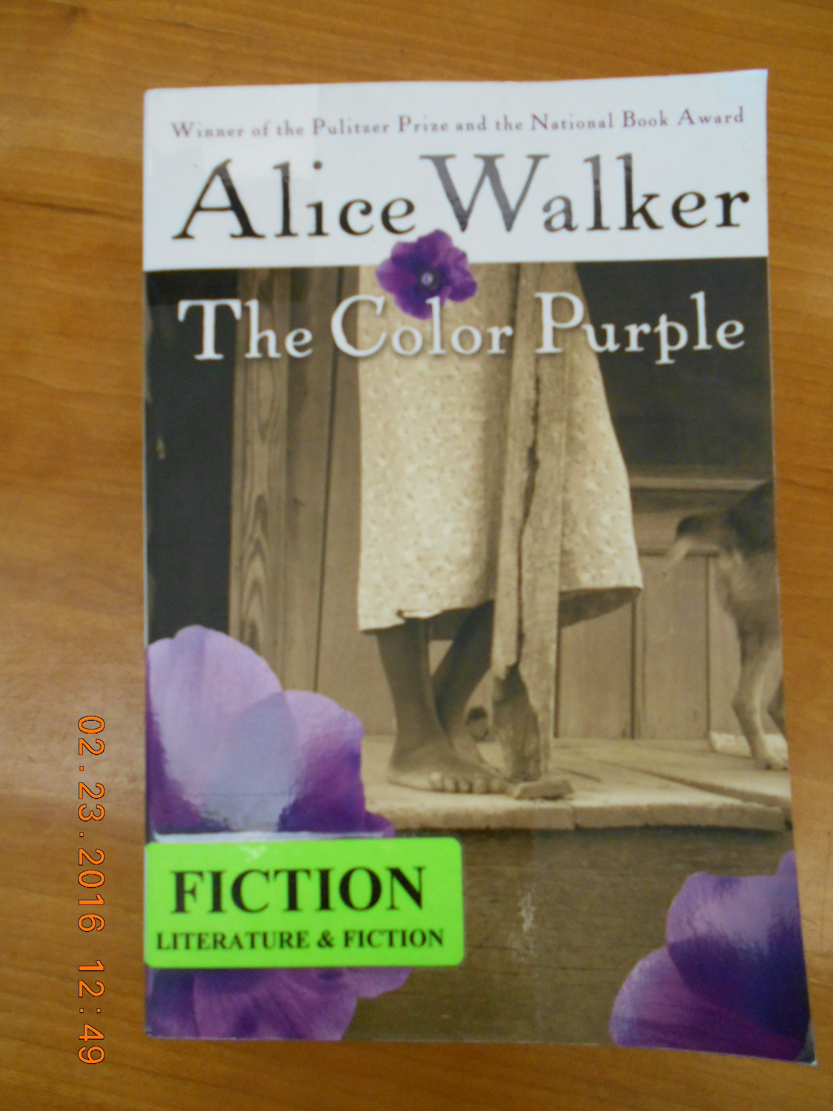 an overview of alice walkers novel the color purple Overview the color purple prize-winning novel the color purple is the published to unprecedented acclaim, the color purple established alice walker as a.